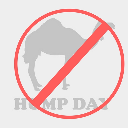 Not Just Hump Day
