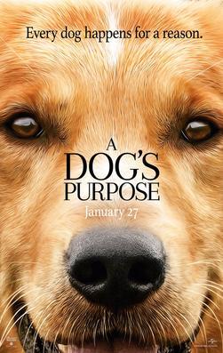 Non Standard Plots: A Dog's Purpose